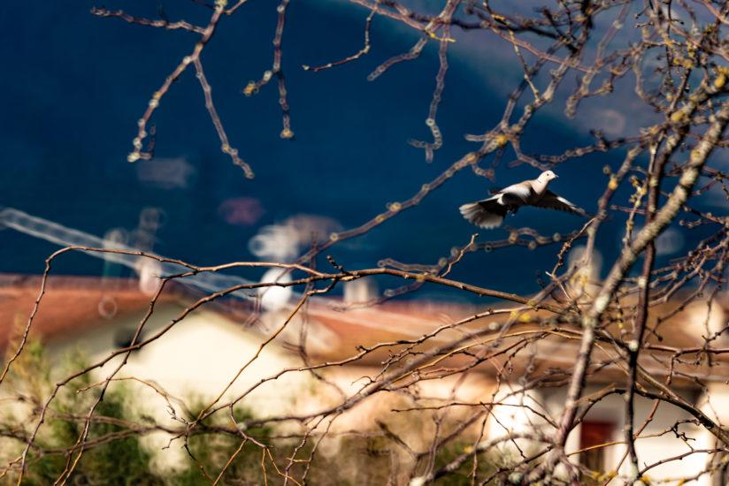 UT Moon Landscape Field Italian Beauty